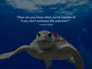 Explore_new_possibilities_copy